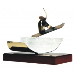 Trofeos freestyle Snowboard half pipe